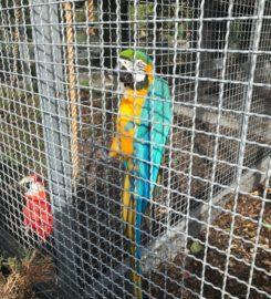 Vogelpark Bobenheim-Roxheim